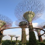 新加坡親子遊